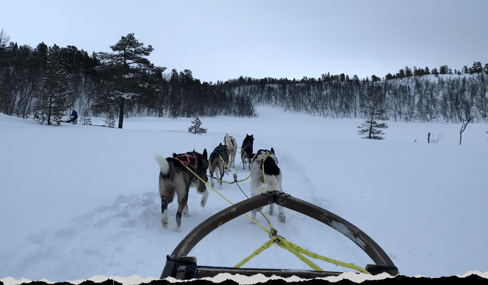 Header,-Winter-Incentive-in-Tromsø,-Credits-Audrey-Blamoutier