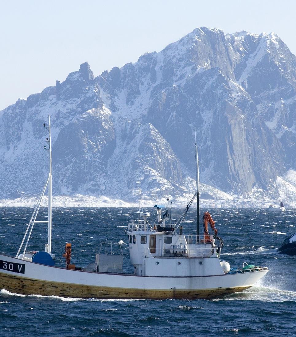 Highlight 5a - Fishing in Lofoten - Copyright Terje Rakke Nordic Life www.nordnorge.com